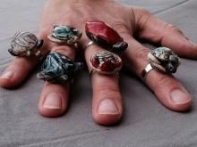 Bagues tortue