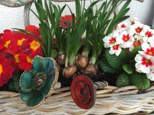 Fleurs à planter dans les pots (intérieur ou extérieur)