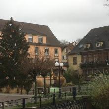 Le sapin de Niederbronn-Les-Bains, devant l'Hôtel de Ville